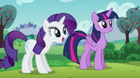 "Rarity ""...require certain necessities..."" S5E24"