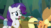 "Rarity ""not like Fluttershy to disappear"" S8E13"