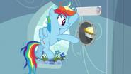 S07E23 Rainbow wrzuca ciasto do dziury ukrytej za plakatem