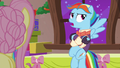 "Snowdash ""just mad at somepony"" S06E08.png"