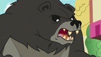 "Bear-Thorax enraged ""yeah!"" S7E15"