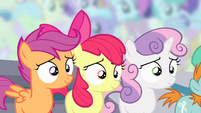 Cutie Mark Crusaders awaiting announcement S4E05