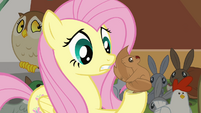 Fluttershy talking to Squirrel S4E1