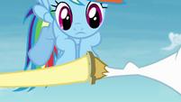 Fluttershy touches the horseshoe on Bulk's hoof S4E10