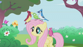 Fluttershy with birds S01E03.png