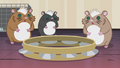 Hamsters mesmerized by tambourine's sound EG2.png
