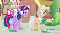 Mayor Mare points Twilight toward the gazebo S4E23
