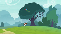Pipsqueak gets his kite stuck in a tree S8E12