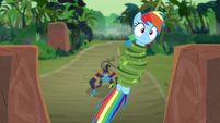 Rainbow Dash pulled up temple stairs S9E21