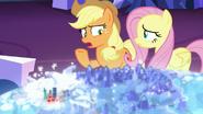 S06E20 Znaczki Applejack i Fluttershy nad Las Pegasus