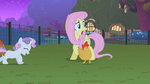 Sweetie Belle chasing a chicken S1E17