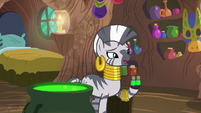 "Zecora ""there's no time to waste"" S9E18"