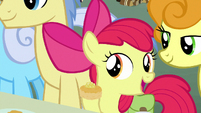 Apple Bloom -you must be new- S7E13