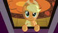 Applejack looking at the sky S3E8.png