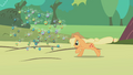 Applejack rounding up some parasprites S1E10.png