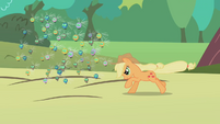 Applejack rounding up some parasprites S1E10