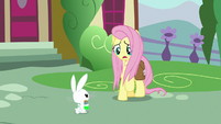 "Fluttershy ""Zecora said to go home first!"" S9E18"