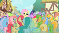 Fluttershy being mobbed S1E20.png