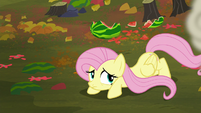 Fluttershy crawling away from the fight S5E23
