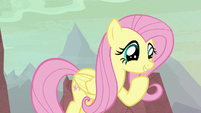 Fluttershy excited as she enters hatching grounds S9E9