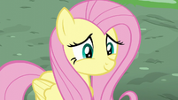 Fluttershy smiling awkwardly at Rainbow S6E11
