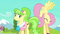 Fluttershy struggles with Peachbottom's luggage S03E12.png