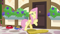 Fluttershy tries opening the door once more S7E5.png