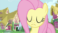 Fluttershy trying to get the attention of Twilight and RD S4E21.png