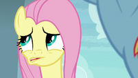 "Fluttershy whispers ""also spider cruelty"" S9E21"