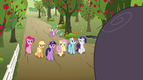 Mane Six looking at Mr. Tortoise-Snap S9E13