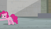Pinkie Pie reaching off-screen S9E14