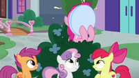 Pinkie Pie stuffing her face with cupcakes S8E12