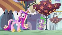 Princess Cadance greeting Spike S5E10