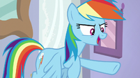 Rainbow Dash -don't worry, Twilight!- S8E17
