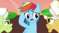 Rainbow Dash -sorry I misjudged you- S8E5