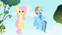 Rainbow Dash and Fluttershy talking at the same time S1E25