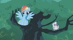 Rainbow Dash it was me S1E14
