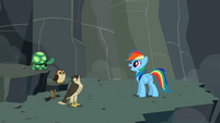 S02E07 Rainbow Dash ze zwierzętami w wąwozie