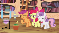Scootaloo and Sweetie laughing S4E15