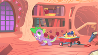 Spike letting apples go through his tail S1E24