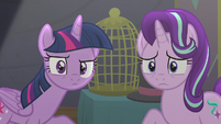 Twilight and Starlight look at Trixie S6E6