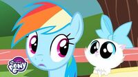 'The Pet Song' Music Video 🐶 MLP Friendship is Magic 🎶 MusicMonday-0