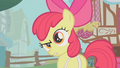 """Apple Bloom """"likely story"""" S1E12.png"""