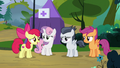 """Apple Bloom """"well, we've been pretty busy"""" S7E21.png"""