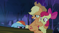 Applejack 'So where is it's brain-' S3E6