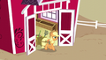 Applejack walking out of Sweet Apple Acres barn S5E3.png