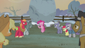 "Pinkie Pie ""the first flag was sewn by"" S5E20.png"