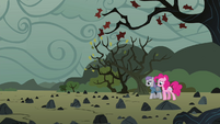 Pinkie and Maud reach the rock farm S4E18