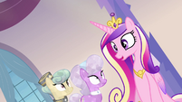 "Princess Cadance ""all the precise instructions"" S03E12"