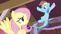 Rainbow Dash not coming back S2E14